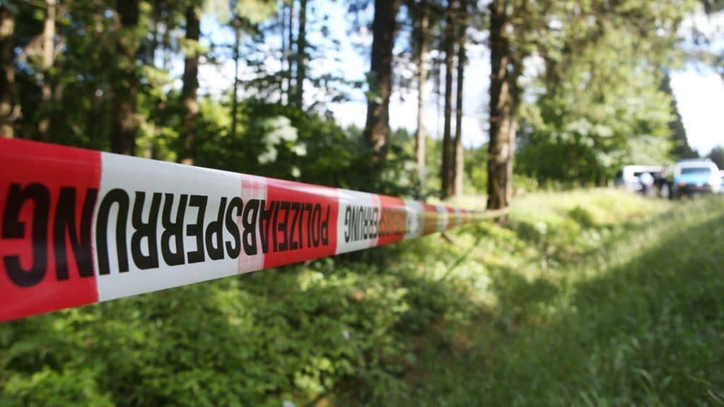 Происшествия: Сын привел полицию к тайнику отца: чиновники не могли поверить в то, что увидели