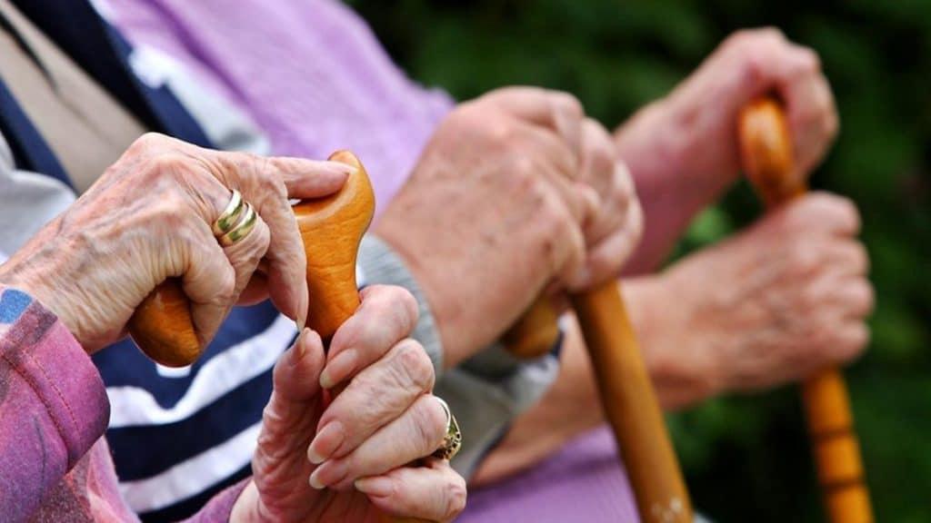 Отовсюду обо всем: Полиция остановила оргию пенсионеров в природном заповеднике